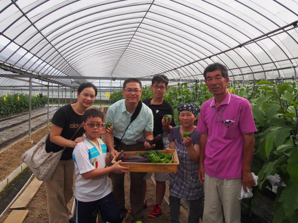筆者が同行取材した台北在住の黄さん一家は民泊先のビニールハウスでナスやピーマンを収穫した