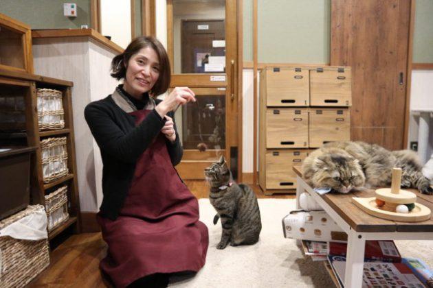 ▲猫を愛するオーナーの安部さん